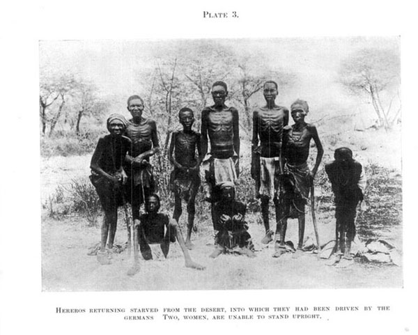 Fig 1: Pagina 181 del Blue Book: Prigionieri herero sopravvissuti al deserto dell'Omaheke. Fonte: Union of South Africa, 1918, Report on the Natives of South-West Africa and their treatment by Germany, London: His Majesty's Stationery Office: 181.